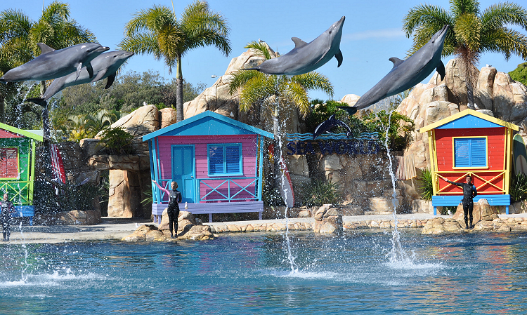 My day at Sea World Australia #xlinqld